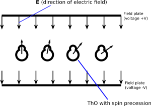 A cartoon diagram of what roughly happens in the interaction region, where a pair of field plates apply an electric field that causes spin precession as the ThO molecules go through it.
